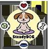 SteadyDOG™
